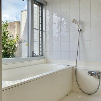お風呂は緑が見えて透明度も高いですね。