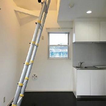 ロフトへつながるはしご。