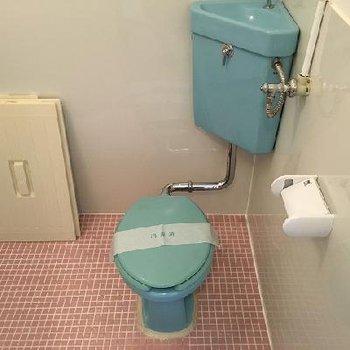ブルーのトイレに時代を感じます