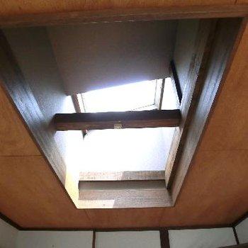リビングの天窓。