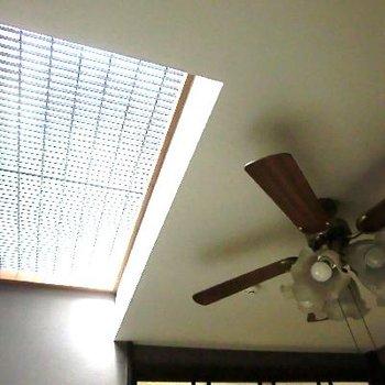 和洋部屋の天井はこちら。天窓◎