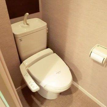 トイレの壁が謎に色が違います。