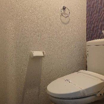 トイレは少し手狭…