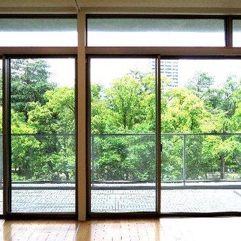 鑑賞する窓辺