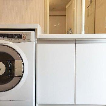 正面から。洗濯機の上を収納に使ってもよさそう