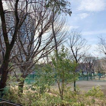 お部屋周辺には緑豊かな公園がいくつかありますよ。