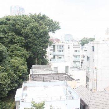 木々の向こうに見える建物はガーデンプレイスです