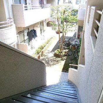 この階段を上がってお部屋へ♪