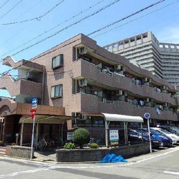 真裏に名古屋市立大の大学病院がそびえます