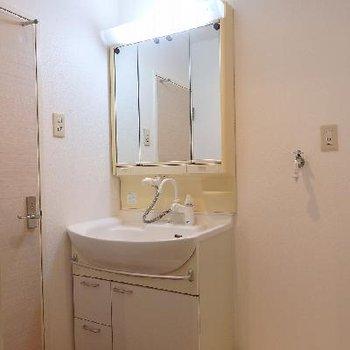 水回りはとてもコンパクト。独立洗面台にはシャワーもついています。