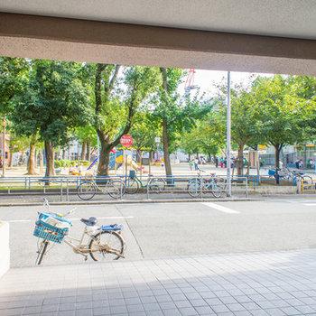 建物玄関の目の前は広い公園