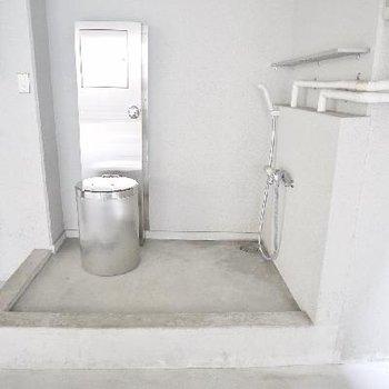 ここがペット専用足洗い場。