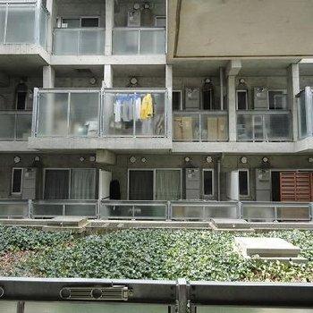 バルコニーからの眺望、グリーンが見えています※写真は別部屋