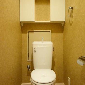 トイレは収納も付いてます!