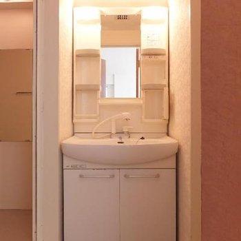 独立洗面台もあります。ここが脱衣所にも。*お部屋は別部屋です