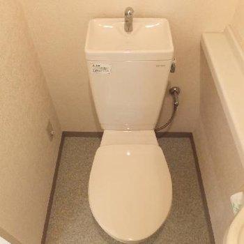 トイレ用の洗面台もあり。*お部屋は別部屋です