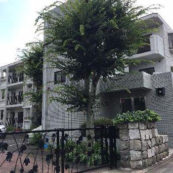 緑に囲まれたマンションSECOM入っています