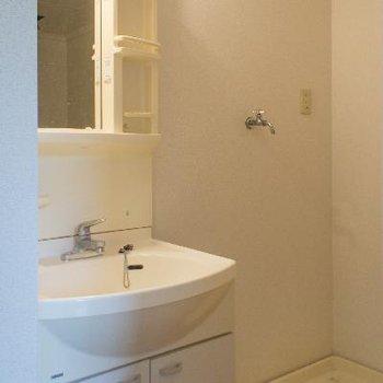 独立洗面台&室内洗濯機置場 嬉しい!