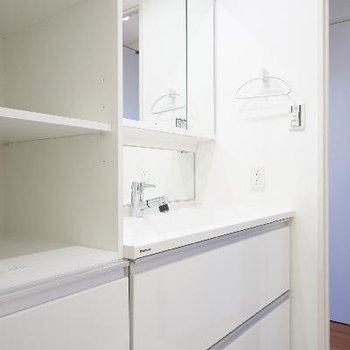 洗面台も大きく横に収納も!