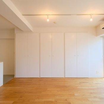 このスラッとみえる扉、全て収納です!