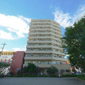 オートロック付きのしっかりとした建物です!1階はお店入ってます。