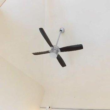 高い天井の上にはシーリングファンもついてるんです!