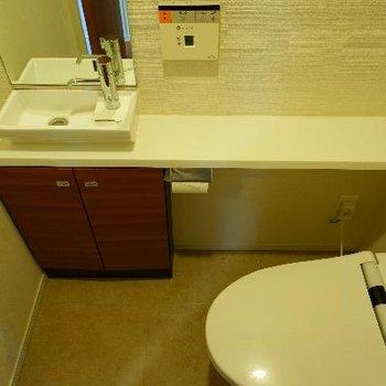 トイレには専用の洗面台と鏡もついて機能的!