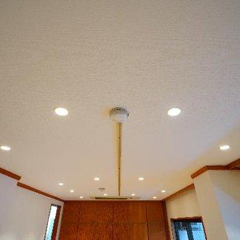 天井にはライトがたくさん!ライティングレールが真ん中に!