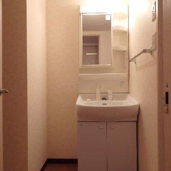 脱衣所も広く、独立洗面台あり