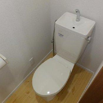 トイレ。実は棚があります。