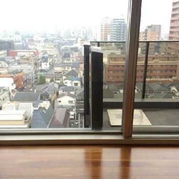この窓の大きさ!※眺望は11Fのもの