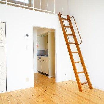 ロフトへはこの梯子で上がります♪※写真は前回募集時のもの