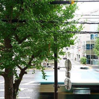 眺望です。大通りです。