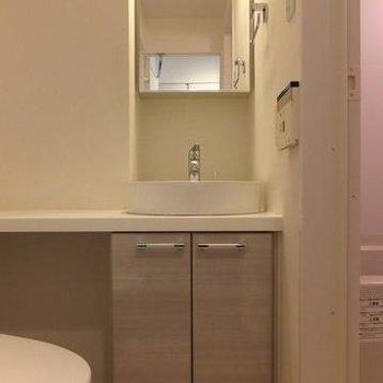 収納力もある独立洗面台です。※写真は別室