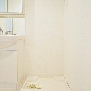 洗面台の横に洗濯パンもあります。