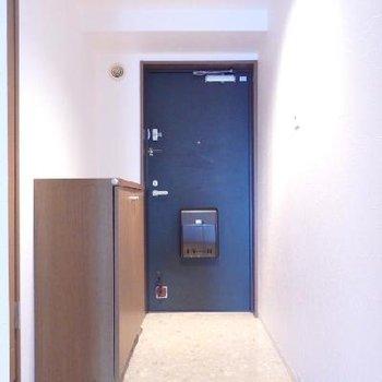 玄関の様子※写真は別部屋