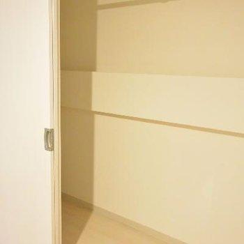 しっかり収納できるクローゼット※画像は103号室のものです