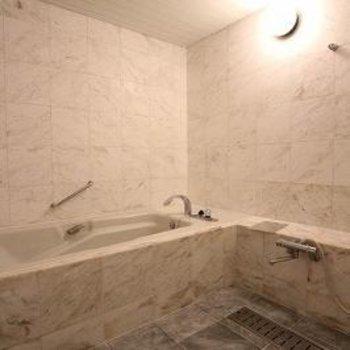 賃貸でこんなお風呂なかなか見たことない!