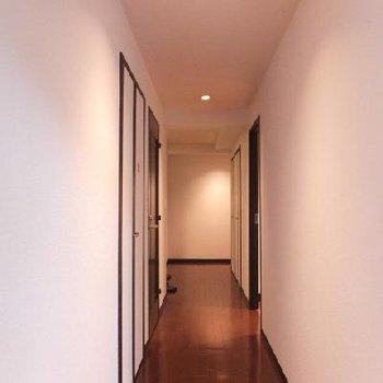 廊下、長い!※203号室