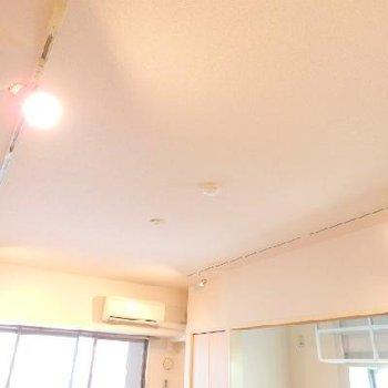 天井にはライティングレールにスポットライト