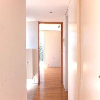 廊下。真っ白だけでなく木枠が使われているのポイントになっていいですね