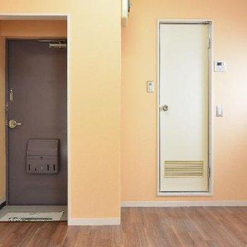 玄関と水回りの扉