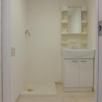 大きめ洗面台と、脱衣スペース