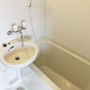 お風呂は小さめ。