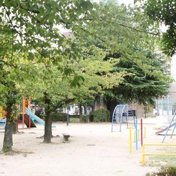 道路を挟んで向かいは、遊具の豊富な公園です。