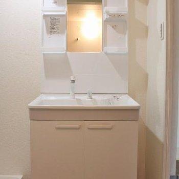 洗面台は普通です。サイズは大きい。
