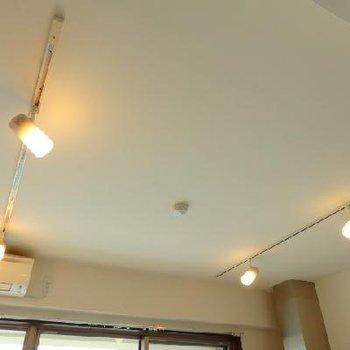 天井にはライティングレール&スポットライト