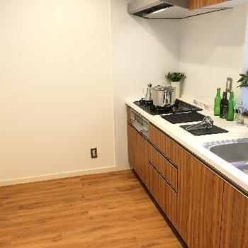 キッチンの後ろのスペースがかなり広かったです!ゆったり料理が出来そうです!