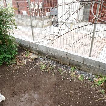 ちょっとしたお庭付き!
