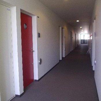 ホテルのような共有廊下。自慢できます。